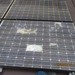 太陽光点検